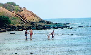 Last week's picture of visitors to the island walking on the corals
