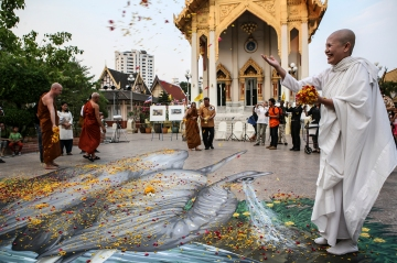 A monk at Wat That Thong temple in Bangkok During a Buddhist merit-making ceremony to pray for the tens of thousands of elephants poached annually (c) WWF Thailand