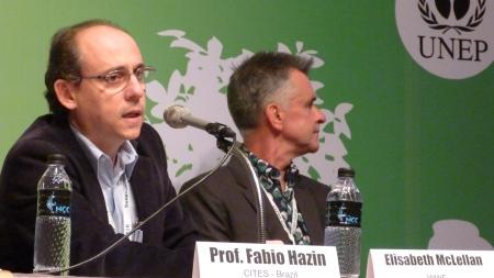 Z Prof.Fabio
