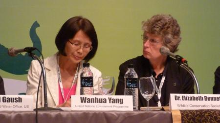 z wanhua Yang