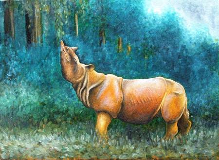 4 - a Rhino extinct from