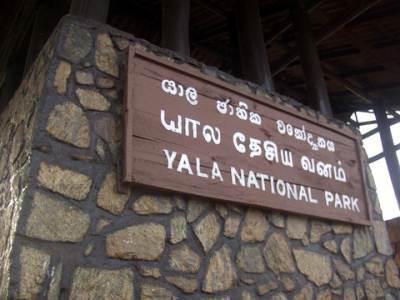 Yala Entrance