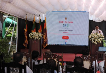 1. Launching of REDD website - LOW RES