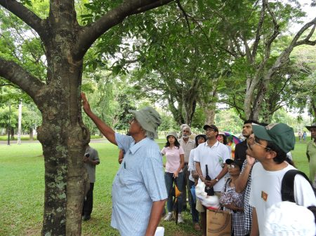 Tour of Trees - Ismath decscribing a Kalumediriya tree
