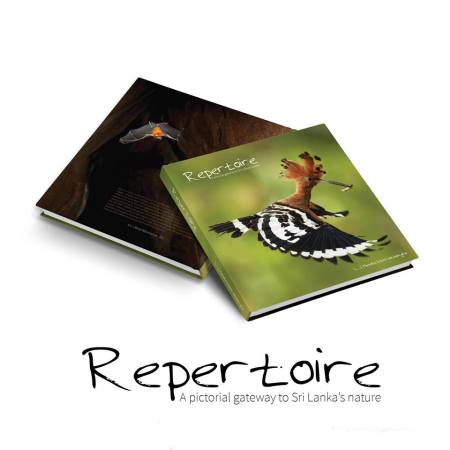 Repertoire - COVER PHOTO and THE BACK
