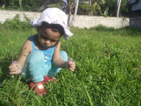 2016, WED - plucking nidikumba flower 1